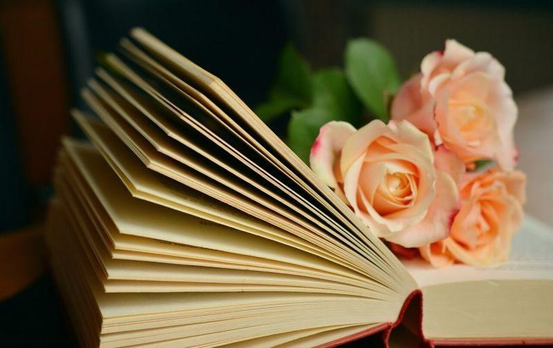 Pemikiran Psikologi Pengarang Dalam Karya Sastra