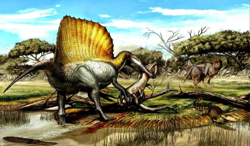 Zaman Neozoikum
