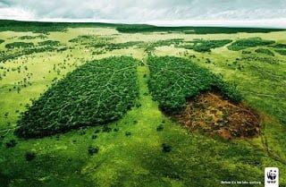 Iklan tentang kelestarian hutan